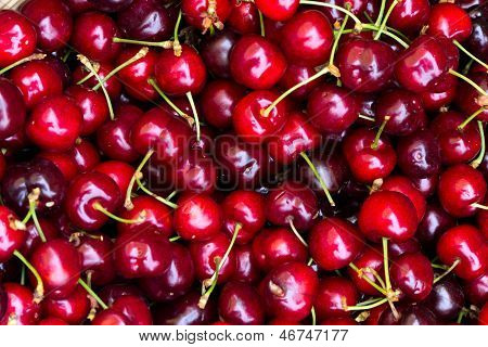 Fresh sweet cherries on the local farmer market