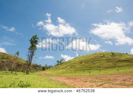 Beautiful Summer Landscape With Road Inti The Mountain.