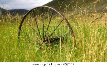 Abandon Wagon Wheel