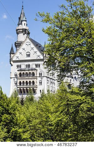 Neuschwanstein Castle Among Trees