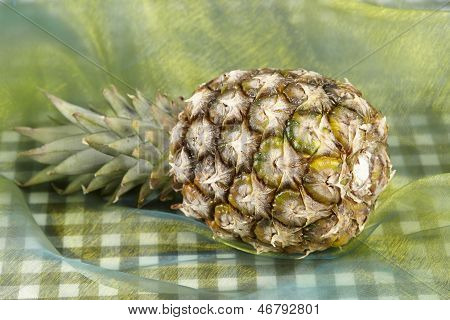 Pineapple - Popart
