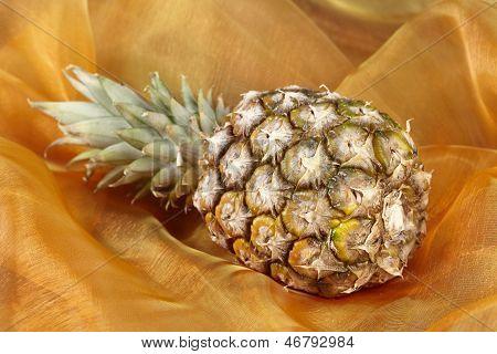 Pineapple - Popart