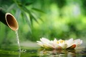 stock photo of bamboo leaves  - Spa still life with bamboo fountain and lotus - JPG