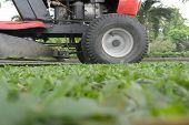 stock photo of grass-cutter  - lawn mower on fresh cut grass in the garden - JPG