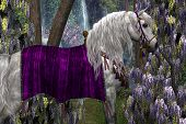 image of bronco  - Portrait of a white Arabian stallion in fancy saddle and bridle with purple Wisteria flowers in the background - JPG