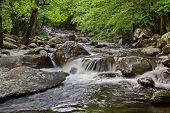 stock photo of rocking  - Water gently cascading off rocks in Smoky Mountain Stream - JPG