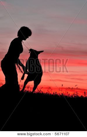 sihouette of a young woman playing with her dog at sunset