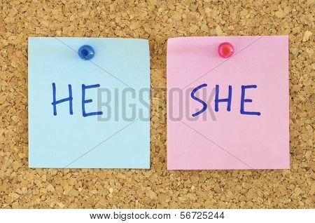 blue and pink paper in a corkboard