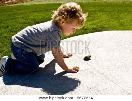 Little Boy, Big Toad