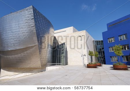 BILABAO, SPAIN - JULY 30: Guggenheim Museum on July 30, 2011 in Bilbao, Spain. Guggenheim Museum is dedicated  exhibition of modern art and was  designed by architect Frank Gehry.