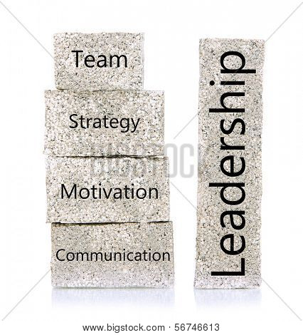 Leadership building blocks isolated on white