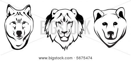 Wolf Lion and Bear