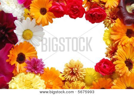 Framework From Flowers With Petals Of Various Colours