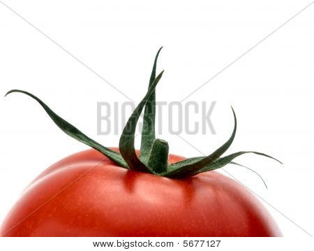 Upper Half Of Ripe Tomato Isolated On White Studio Background