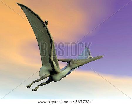 Pteranodon dinosaur flying - 3D render