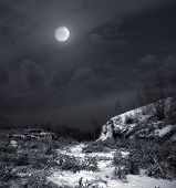 picture of moonlit  - winter moonlit night - JPG