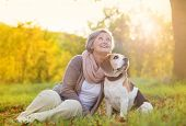foto of dog-walker  - Senior woman hugs her beagle dog in countryside - JPG