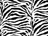 picture of camoflage  - Zebra skin vector - JPG
