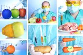 stock photo of genetic engineering  - Genetic engineering laboratory - JPG