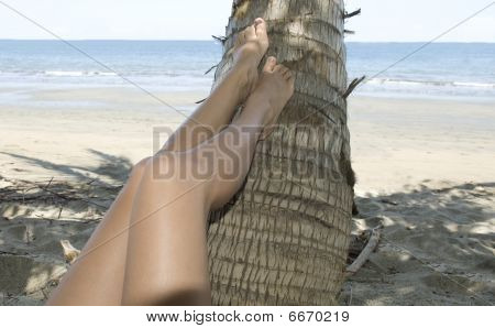 Female Legs With Feet Resting Coconut Tree On Tropical Beach