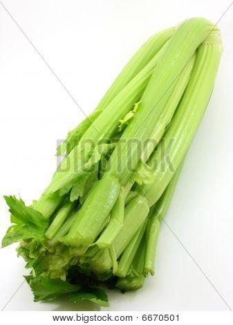 Organic celery from the garden