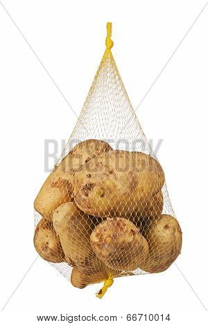 Crude, Rotten, Spoiled, Organic Potatoes In Mesh Bag.