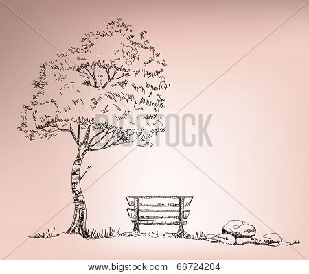 Dramatic Tree Standing Beside Chair