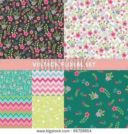 Vivid Seamless Pattern Set.flowers, Branches, Berries,zigzags