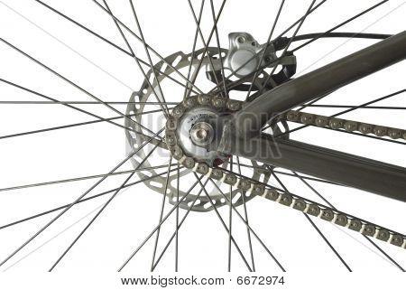 Fahrrad-Hinterrad