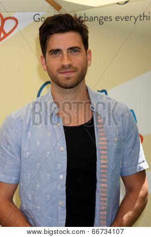LOS ANGELES - JUN 14:  Ryan Rottman at the Children Mending Hearts 6th Annual Fundraiser at Private Estate on June 14, 2014 in Beverly Hills, CA