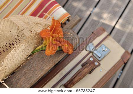 flower on a deckchair
