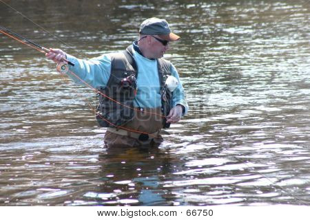 Fly Fishing 4