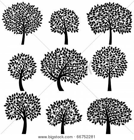 Vector Collection of Tree Silhouettes - Leaves and Branches Grouped Separately
