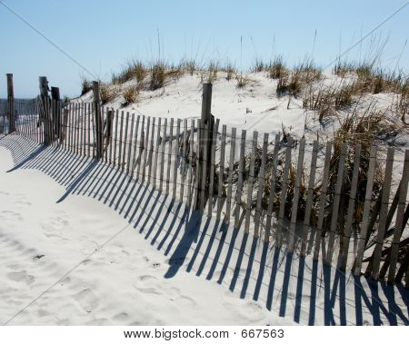 Beach Dunes And Fence