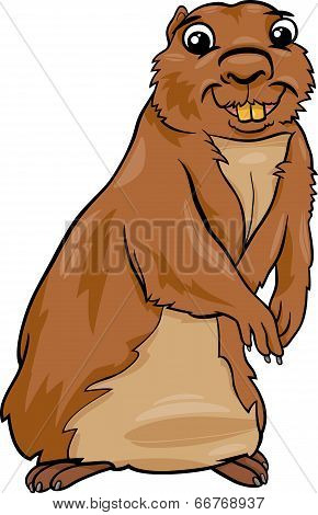 Gopher Animal Cartoon Illustration