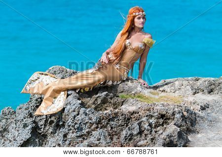 mermaid on the rock