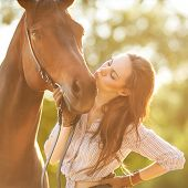 pic of chestnut horse  - Beautiful - JPG