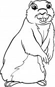 foto of gopher  - Black and White Cartoon Illustration of Funny Gopher Animal for Coloring Book - JPG