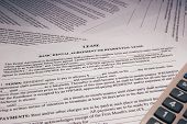 image of rental agreement  - Basic lease rental agreement form and calculator - JPG