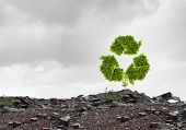 pic of reuse recycle  - Conceptual image with recycle green sign growing on ruins - JPG