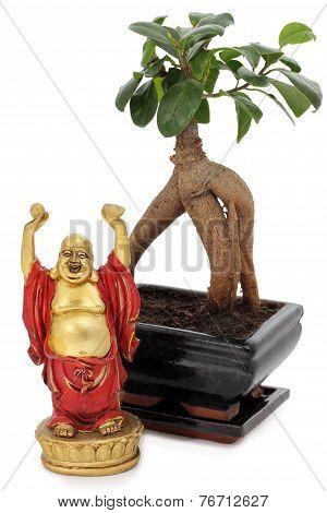 Bonsai And Buddha