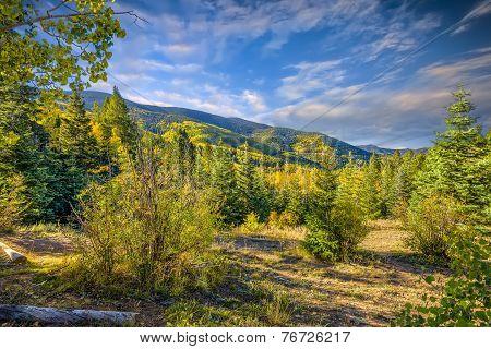 Aspen Vista Overlook