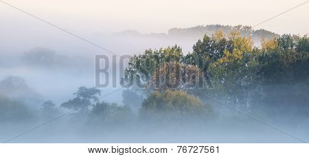 Beautiful Thick Fog Sunrise Autumn Fall Countryside Landscape With Treetops Visible Through Fog