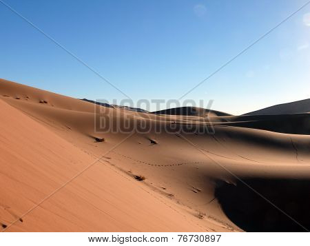 Bowl Of Sand In Moroccan Sahara