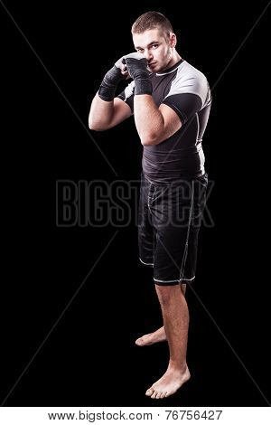 Boxer Over Black