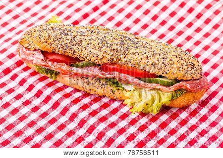 Salami Sub Sandwich