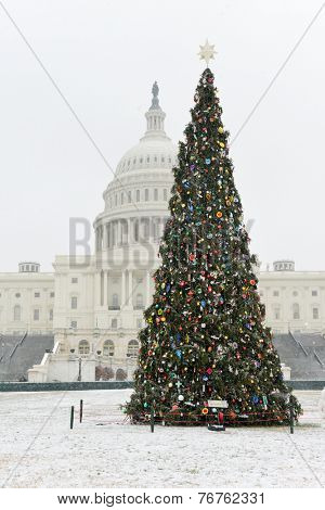 Christmas Tree and The Capitol - Washington DC, United States of America