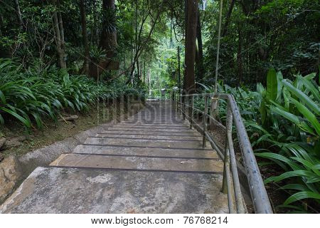 The Stair To Go Uphill