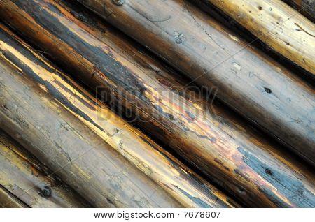 Wet wooden poles