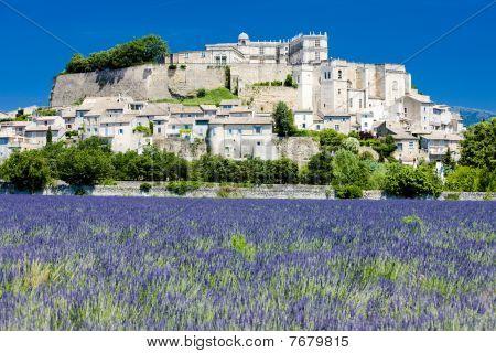 Grignan with lavender field Département Drôme Rhône-Alpes France